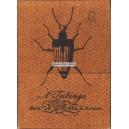 Cotta'schen Spielkarten-Almanach Jungfrau von Orléans (WK 14225)
